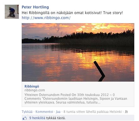 Sosiaalinen media sekaisin Ribbingön nettisivuista!